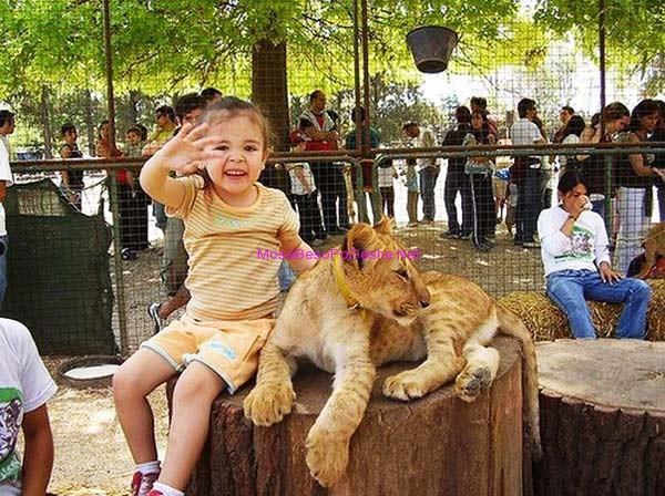 femija dhe luani