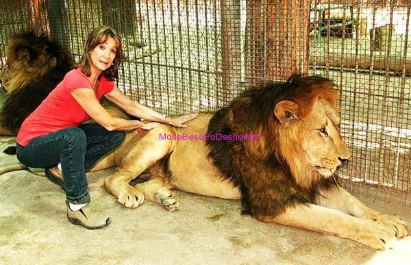 gruaja me luanin