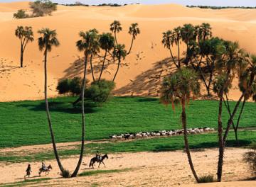 Kuriozitet per shkretetiren e Sahara Desert